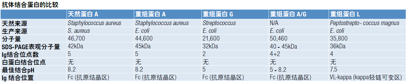 【蛋白技术】抗体亲和纯化产品选择指南